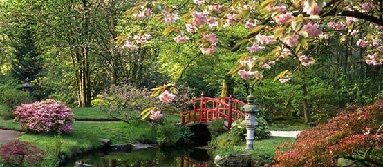 Dupré Latour paysagiste : jardin japonais drome
