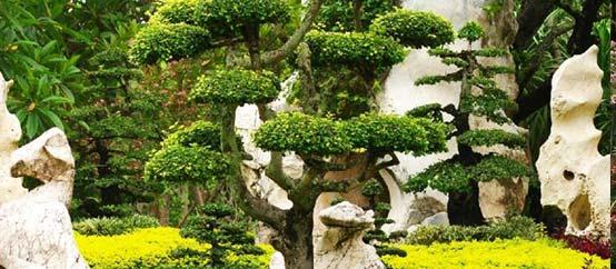 Dupré Latour paysagiste : jardin zen