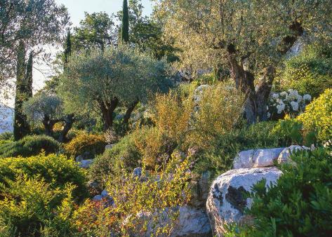 couleur jardin
