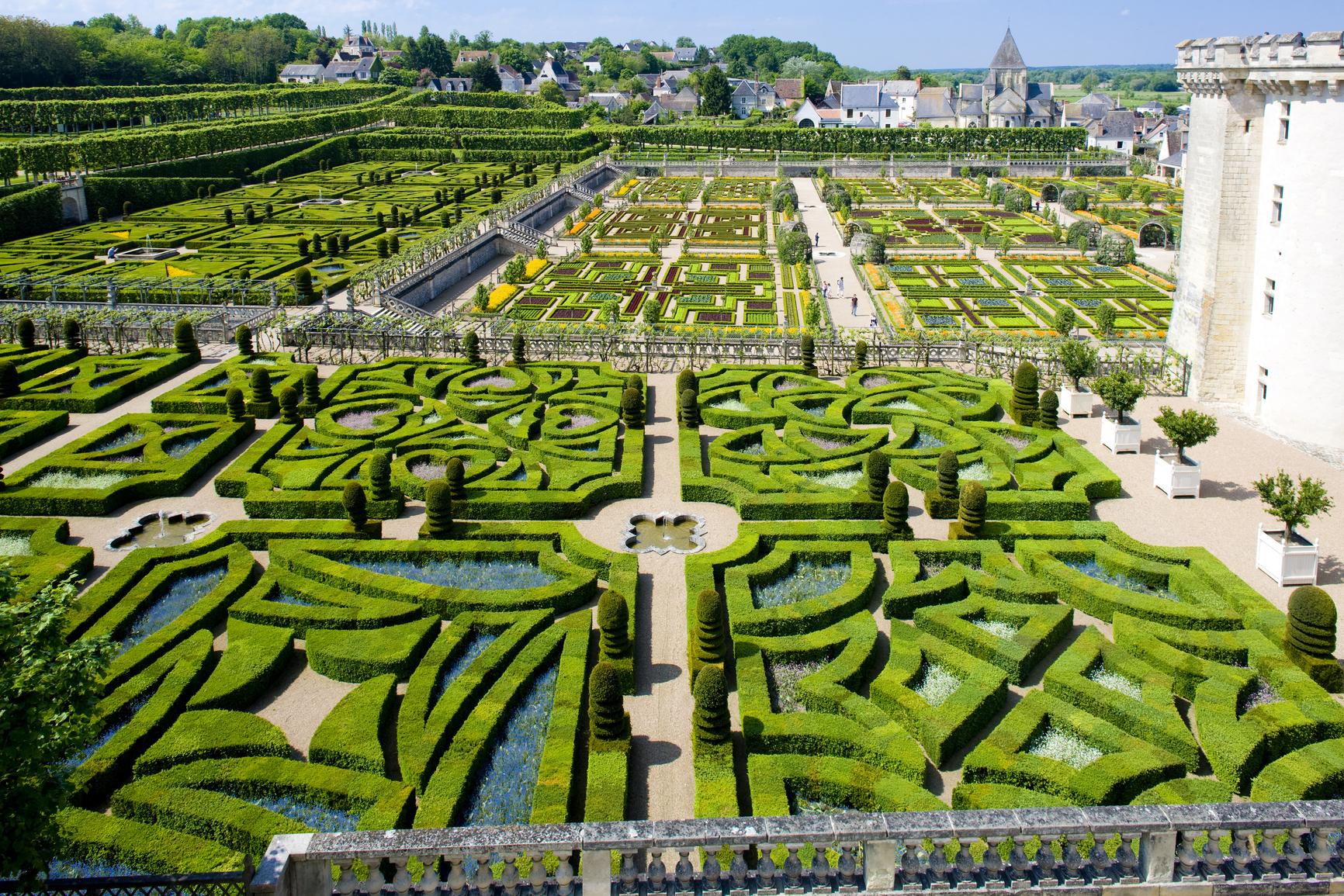 Villandry Castle''s garden, Indre-et-Loire, Centre, France