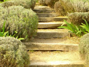 Escalier en traverse