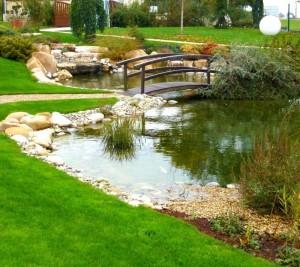 Bassin naturel - Livron
