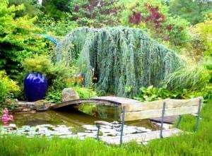 Bassin romantique - Ardeche