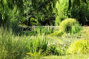 Jardin romantique - Livron-sur-Drome