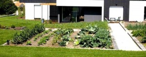 Potager contemporain - Grane